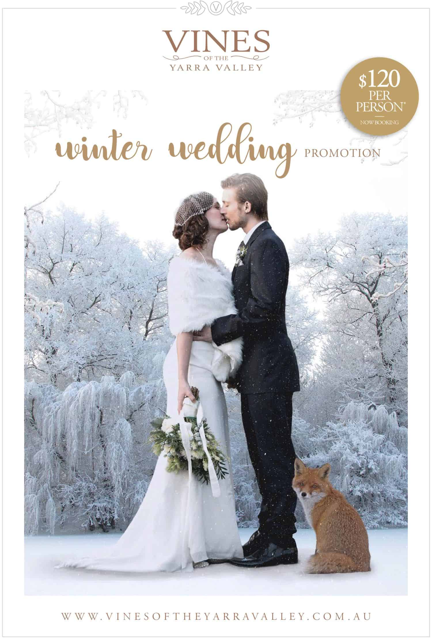 Winter Wedding Promotion_Vine-1