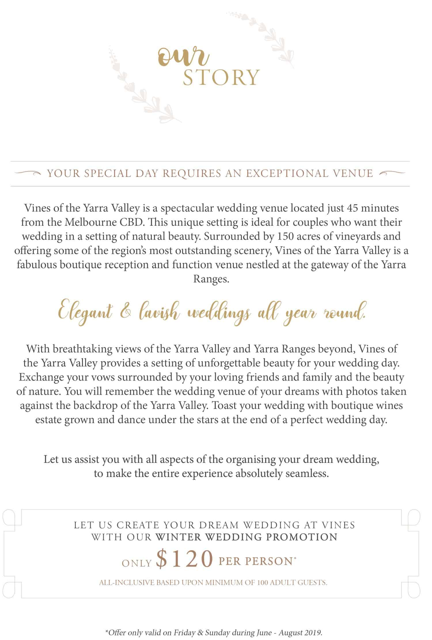 Winter Wedding Promotion_Vine-2