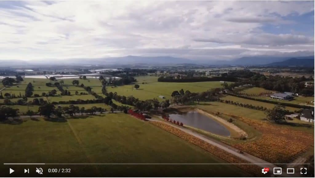vines of the yarra valley youtube video