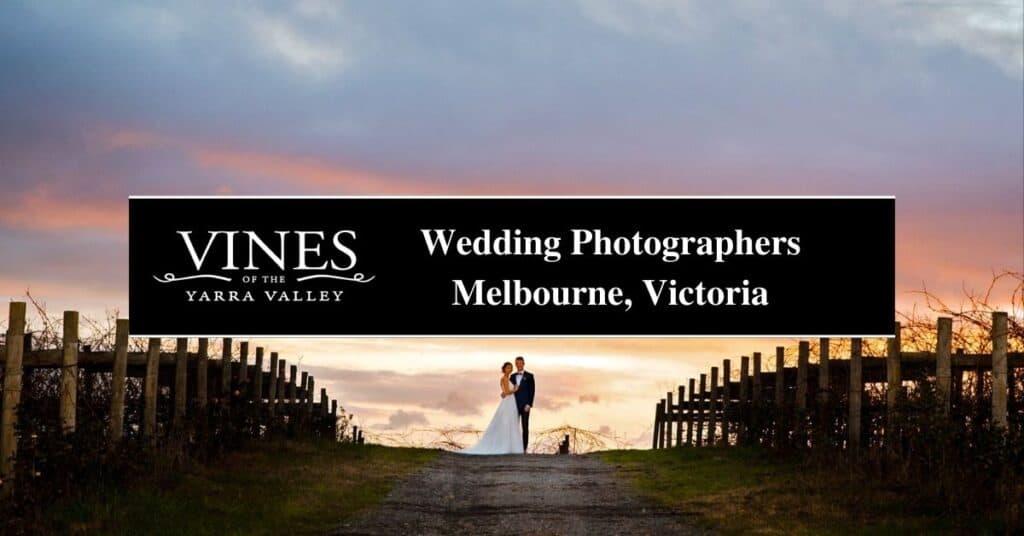 wedding photographers melbourne, victoria vines