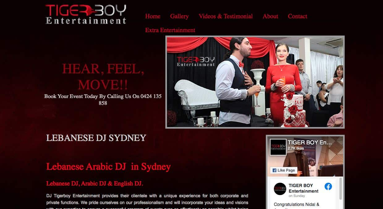 Tigerboy Entertainment Wedding Dj Sydney