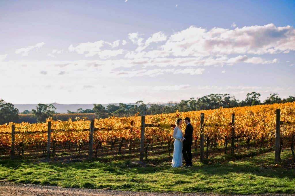 Wedding Couple At Vines Vineyard Yarra Valley 1024x681