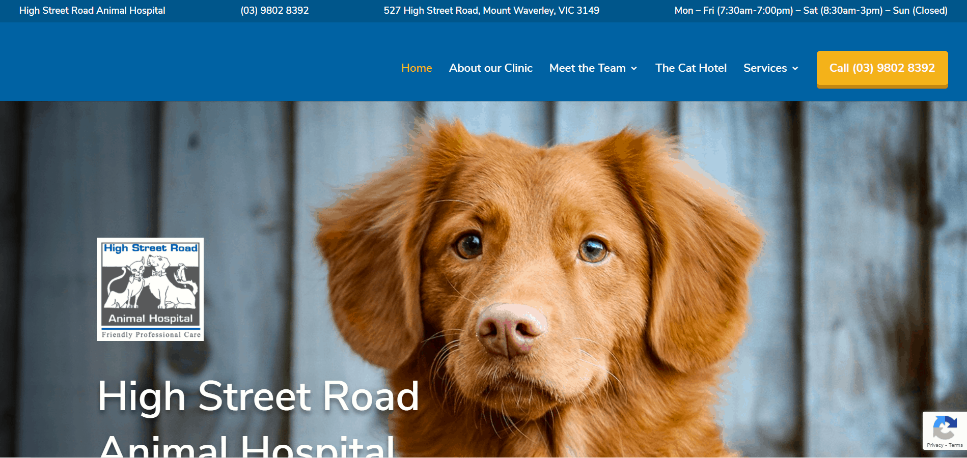 High Street Road Animal Hospital