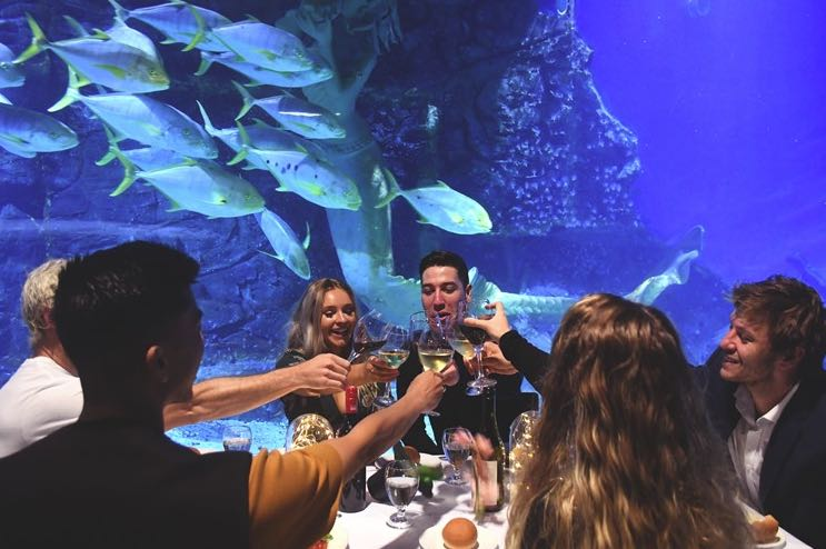 Sea Life Christmas Dinner idea Melbourne